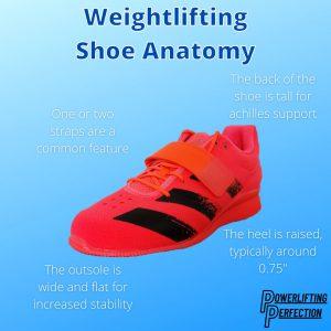 Weightlifting Shoe Anatomy